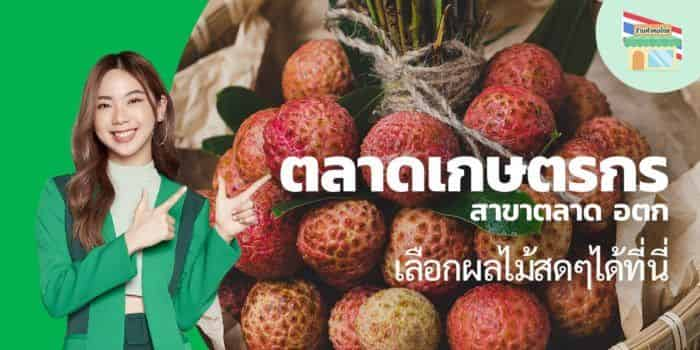 TH_Fruits_MEX_PUN